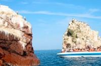 Tour Ballestas Islands 2 days / 1 night